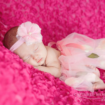 Newborn baby Avery portrait photographer Lake City, Fl