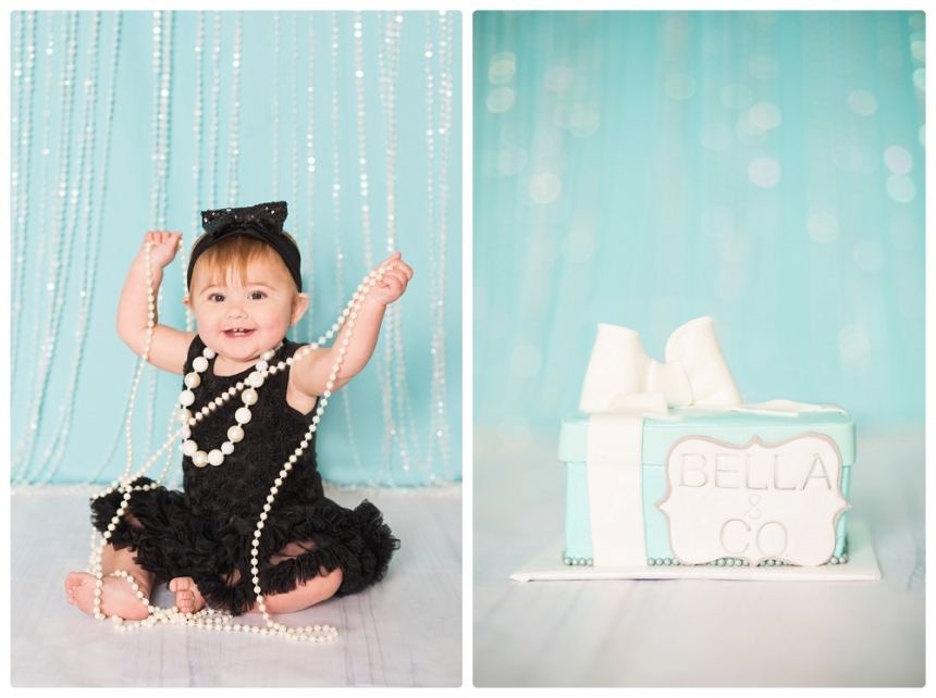 Bellas 1st Birthday cake smash Tiffany and co Lake City Gainesville Fl Photography Captured Memories by Esta Photographer Columbia Fl Live Oak Fl North Florida_0013