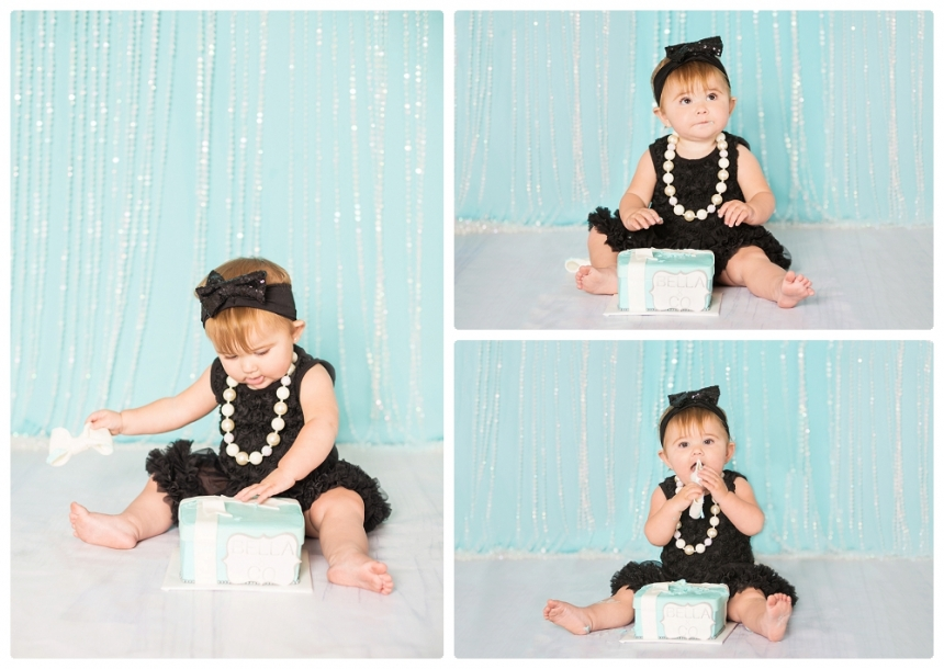 Bellas 1st Birthday cake smash Tiffany and co Lake City Gainesville Fl Photography Captured Memories by Esta Photographer Columbia Fl Live Oak Fl North Florida_0015
